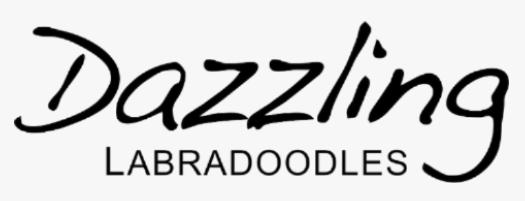 Dazzling-labradoodles